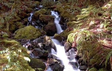 waterfall at mt rainier