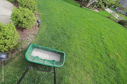 canvas print picture fertilizer and yard