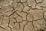 dry soil background poster
