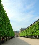 jardin royal poster
