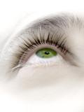 ojo verde xii poster