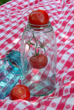vintage glass tomato canning jar poster
