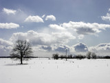 winter - 660551