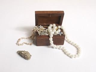 small sea treasure