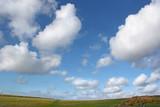 wide open sky poster