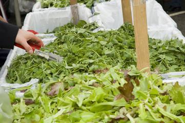 mesculing salad