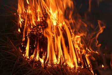 burning_order
