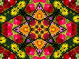 floral quilt design poster