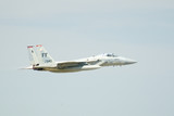 f15 eagle jet fighter in flight poster