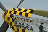 p-51 mustang nose art poster