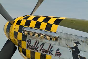 p-51 mustang nose art