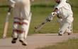 english cricket match - 677762