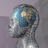 Fototapety head housing a globe