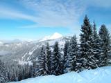 Fototapety the alps