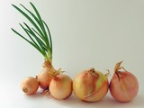 white onions poster