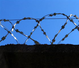 barbed wire 3