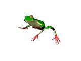 el frog poster