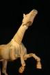 horse mannequin close