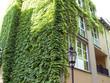 architektur altstadt-spandau (8)