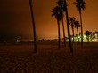venice beach by night