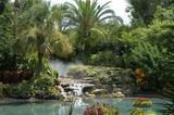 tropical scenario, seaworld park, orlando, florida poster