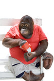 monkey eating chips poster