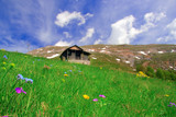 mountain hut and a meadow in macedonia poster