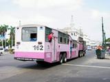 kubanische bus