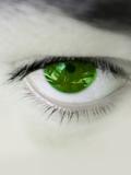 ojo verde nc poster