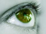 ojo verde no se cuantos poster