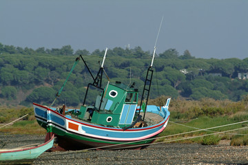 boats resting