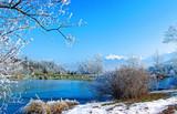 Fototapety lac en hiver