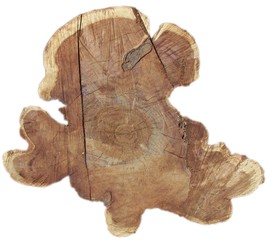 tree core2