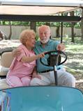 golf cart - backseat driving poster