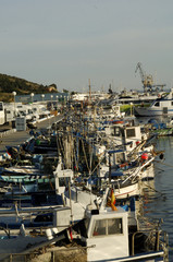 fishing port of roses