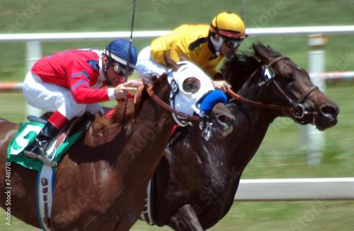 Fotobehang Paardrijden race horses