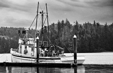 fishing boat in harbor