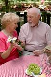 picnic seniors - flowers for her poster