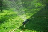 sprinkler lawn poster