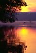 canada geese landing on lake at sunrise