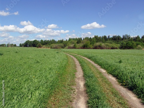 country road in a field