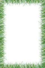 green grass paper summer background