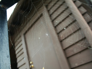 spider web by the door