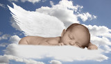 baby infant in clouds with wings poster