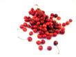perfect cherry