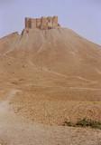 arab citadel poster