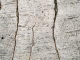 macro texture - concrete - cracked poster