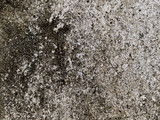 macro texture - old concrete poster