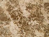macro texture - concrete - discolored poster