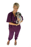 vet and dog with clipping path poster